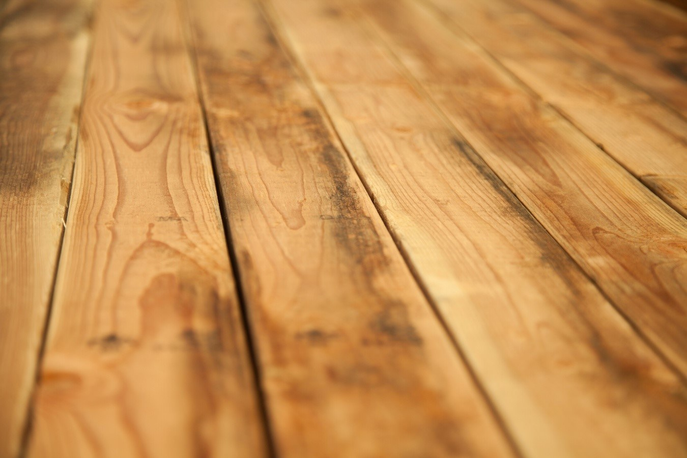 The Best Way to Care for Your Hardwood Floors In Winter